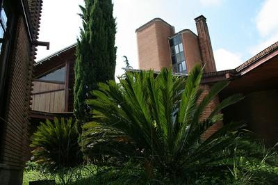 Deustuko Unibertsitatea, Donostia