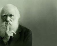 Darwinen eguna ospatuko da gaur Bilbon, urtero legez