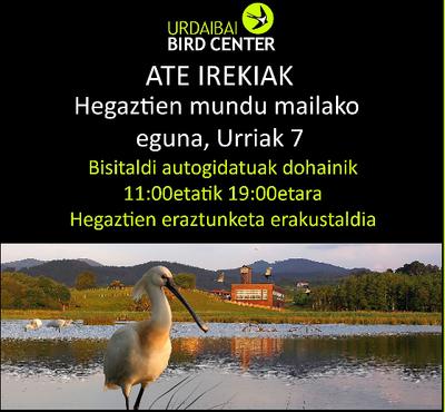 Hegaztien eraztunketa zientifikoa nola egiten den erakutsiko dute Urdaibai Bird Centerren igandean