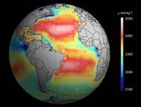 Ikertzaile-talde batek satelite bidez neurtu du ozeanoen azidotasuna