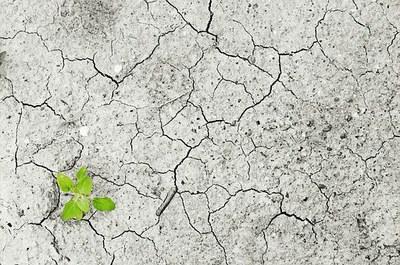 """""""Klima-aldaketa: Euskal Herritik Pirinioetaraino leihoak zabalduz"""" jardunaldiko hitzaldien aurkezpenak Otarrean eskuragarri"""