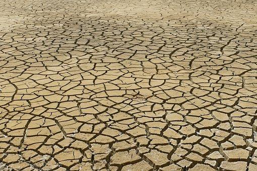 Klima Aldaketaren Aurkako Nazioarteko Eguna dela eta gurean argitaratutako bi eduki interesgarri