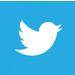 Erabiltzaileek Twittereko menuaren %80a itzuli dute dagoeneko.