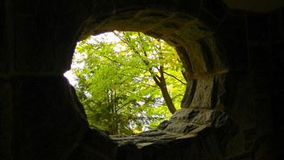 Neandertalak eta cromagnonak: bi gizateria, bi patu