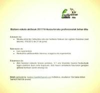 Bizilore Eskola Aktiboak 2017/2018 ikasturterako profesionalak behar ditu.