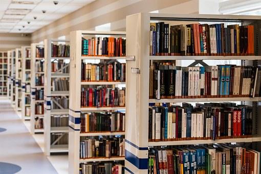 Mondragon Unibertsitateko Enpresagintza Fakultateak liburutegiko teknikaria behar du, Oñatiko bere campusean.